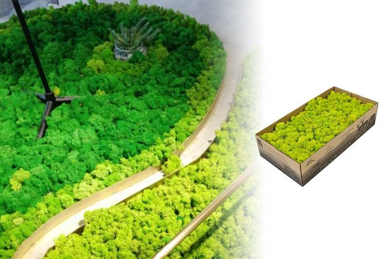 plantas artificiales decorativas para interiores