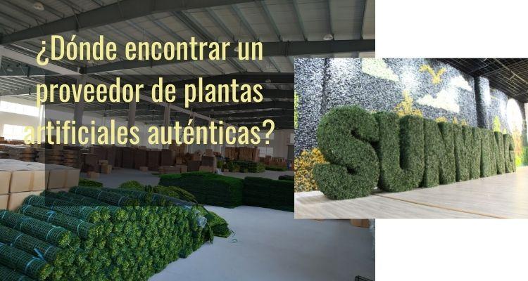 Dónde encontrar un proveedor de plantas artificiales auténticas