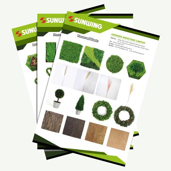 Catálogos de plantas preservadas y azulejos de corcho