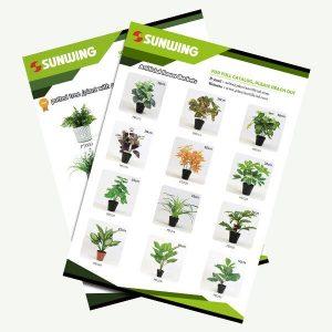 catálogo de árboles de seda en macetas al por mayor